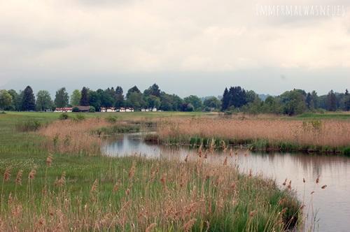 Am Staffelsee
